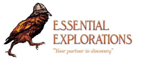 Essential Explorations